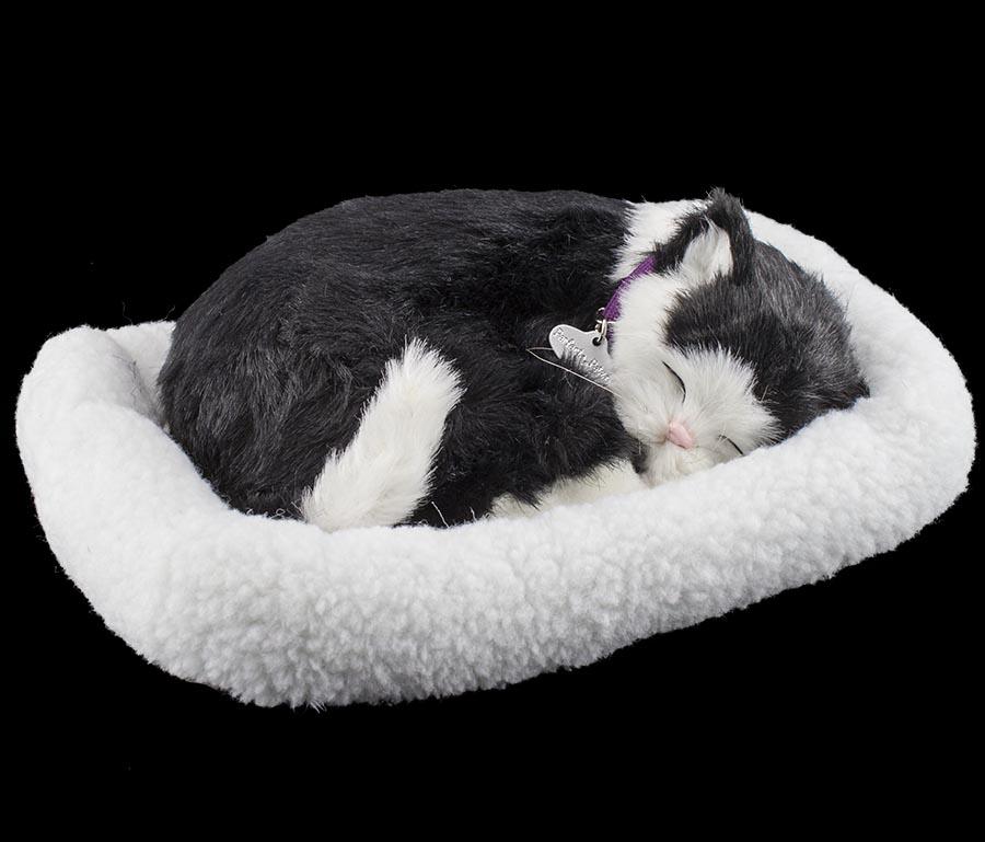 perfect petzzz hund katze atmend schlafend wie echt soft bewegung tragetasche ebay. Black Bedroom Furniture Sets. Home Design Ideas